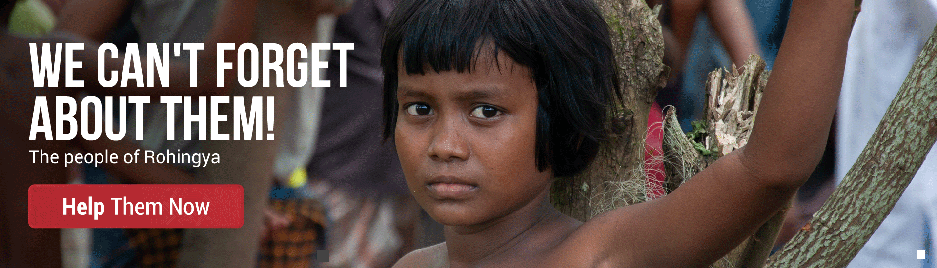 Help Rohingya